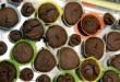 Mâmies pâtissières 27.06 (47)